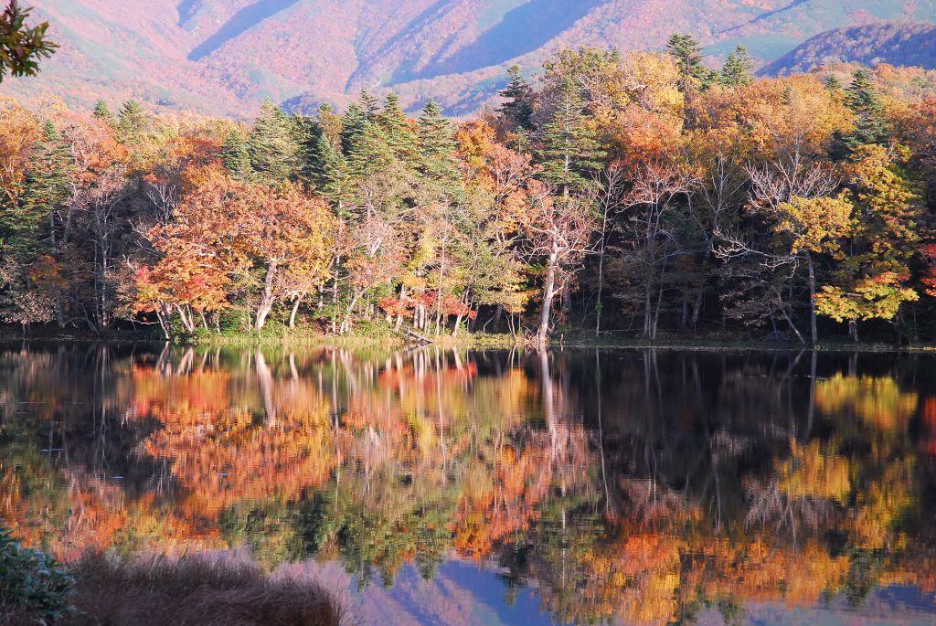 北海道の紅葉:地域別おすすめスポット12選
